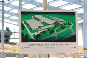 Plans for the Fair Oaks Pig Adventure set to open in early summer of 2013.
