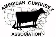 American Guernsey Association