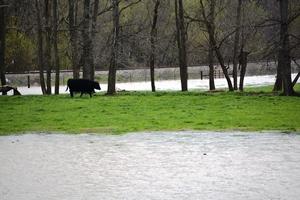 Clarkesville, Missouri ~ photo by Missouri Farm Bureau