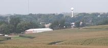 corn field-emerson iowa 8-13