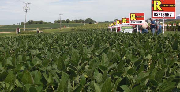 Renk Seed plot in Sun Prairie, Wisconsin