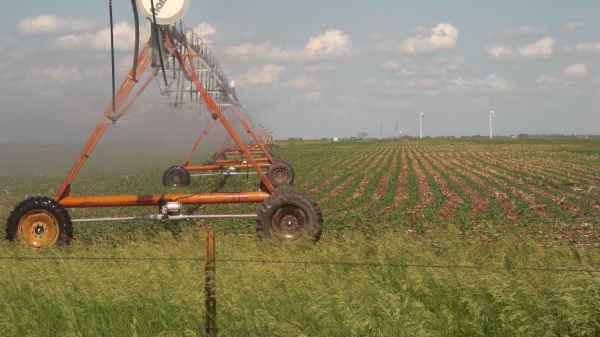 corn-irrigate-keya paha county 6-13
