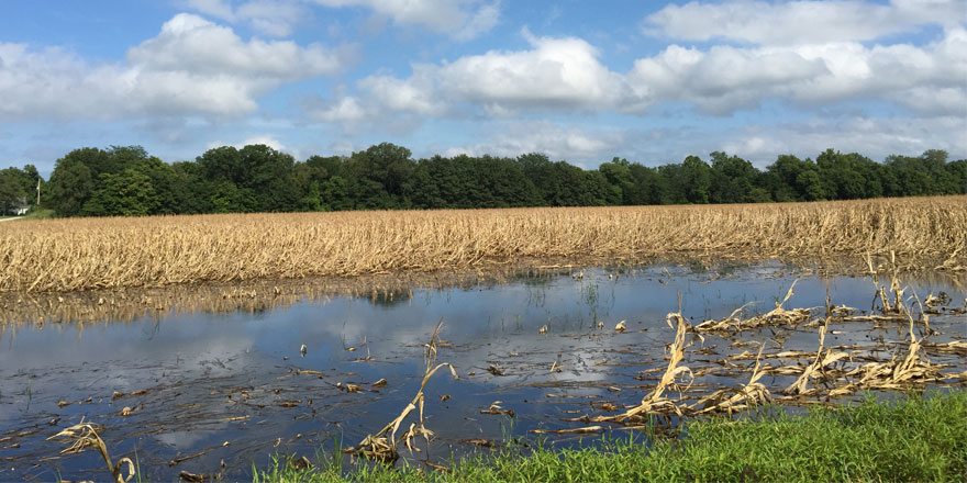 072715Results-of-flooding-i