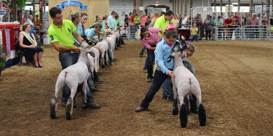 073015-2015-Ohio-State-Fair