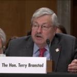 Senate to vote today on Branstad's nomination